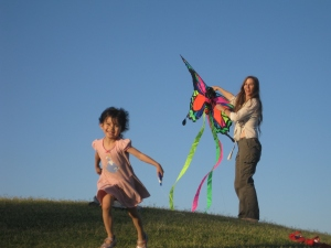 Lets fly a kite