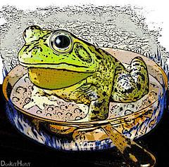 boiling frog - DonkeyHotey