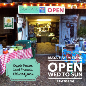 Maya's Farm Stand Now Open